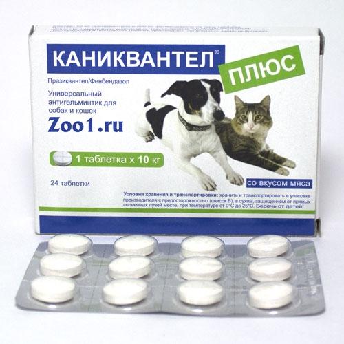 Каниквантел Собакам Инструкция