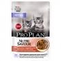 Pro Plan NutriSavour Junior пауч для котят с говядиной в соусе