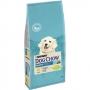 Пурина Dog Chow для щенков курица рис