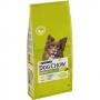 Пурина Dog Chow для собак курица рис