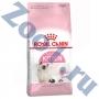 Роял Канин для котят с 4 до 12 месяцев
