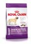 Royal Canin Giant Junior Active для щенков до 18/24 месяцев