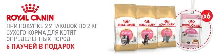 akcija-pri-pokupke-2-h-upakovok-2-kg-suhogo-korma-royal-canin-dlja-kotjat-opredelennih-porod-6-pauchej-v-podarok