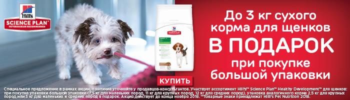 akcija-hills-dlja-schenkov-do-3-kg-suhogo-korma-v-podarok-pri-pokupke-bolshoi-upakovki