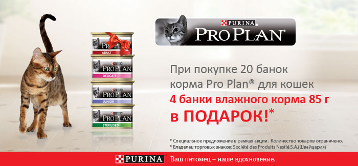 pro-plan-cat-can-20-4-akcija