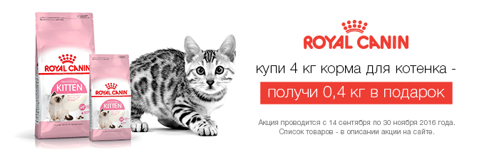 royal-canin-akcja-kitten-babycat-mother-4-kg-400-g